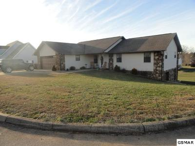 Sevierville Single Family Home For Sale: 2810 English Valley Ln