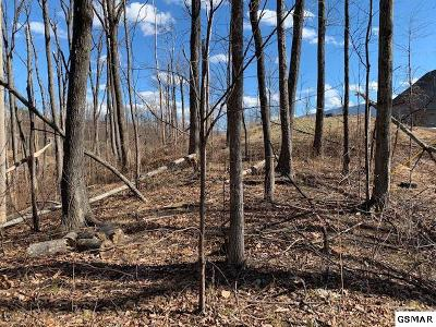 Gatlinburg TN Residential Lots & Land For Sale: $19,900