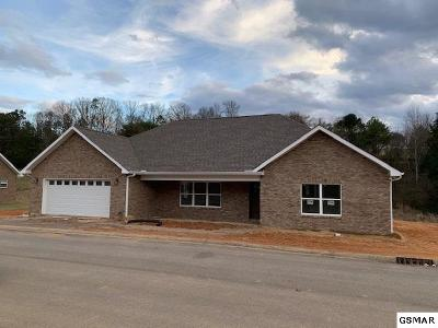 Sevierville Single Family Home For Sale: 2011 Glacier Ave