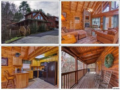 Pigeon Forge Single Family Home For Sale: 519 Blackberry Ridge Way