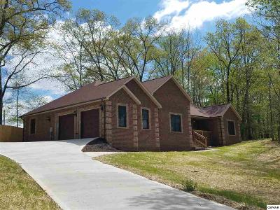 Sevierville Single Family Home For Sale: 1702 Sierra Lane