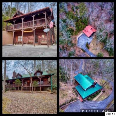 Sevierville Single Family Home For Sale: 703/705 Boone Acres Lane