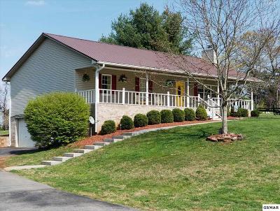 Dandridge Single Family Home For Sale: 351 Battlefield Dr