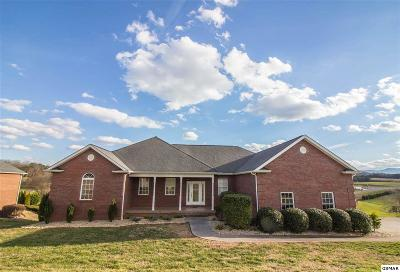 Sevierville Single Family Home For Sale: 1336 Ellendale Cv