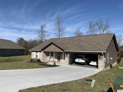 Sevierville Single Family Home For Sale: 2239 Murphys Chapel Drive