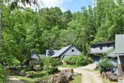Gatlinburg Multi Family Home For Sale: 252 Buckhorn Rd