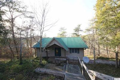 Sevierville Single Family Home For Sale: 907 Present Way