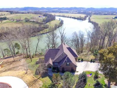 Sevierville Single Family Home For Sale: 1559 Ellis Rd