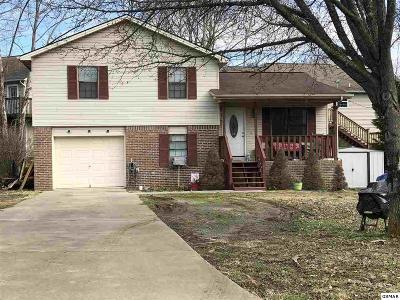 Sevierville Single Family Home For Sale: 1821 Norlil Road