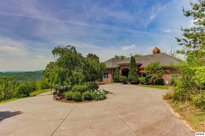 Sevierville Single Family Home For Sale: 3121 Smokies Edge Road