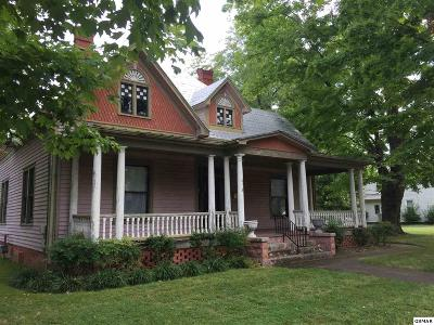 Sevierville Single Family Home For Sale: 318 Cherry St