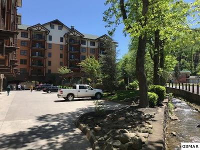 Gatlinburg Condo/Townhouse For Sale: 215 Woliss Ln