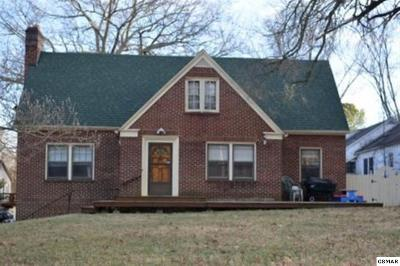 Jefferson City Single Family Home For Sale: 149 E Old Aj Highway