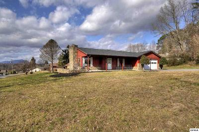 Sevierville Single Family Home For Sale: 1437 Denton Road