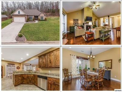 Single Family Home For Sale: 954 Old Hickory Ln