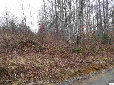 Cocke County Residential Lots & Land For Sale: Lot 24 Trail Way