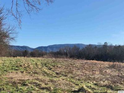 Sevier County Residential Lots & Land For Sale: Wye Drive