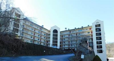 Gatlinburg Condo/Townhouse For Sale: 102 Baskins Creek Byp