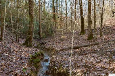 Sevier County Residential Lots & Land For Sale: Lot 28r Pinnacle Vista Rd