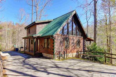 Gatlinburg Single Family Home For Sale: 635 Black Bear Falls Way