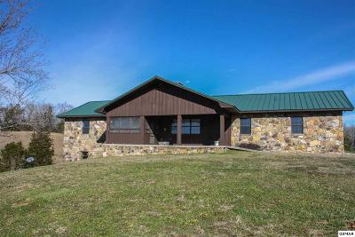 Sevier County Single Family Home For Sale: 341 Alder Branch Road