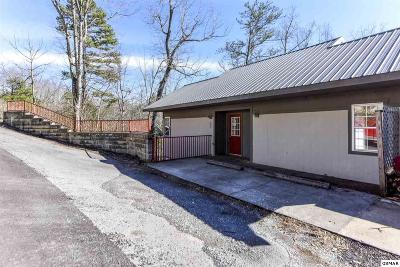Gatlinburg Condo/Townhouse For Sale: 549 Johnson Ln