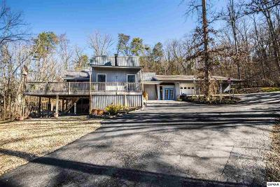 Sevier County Single Family Home For Sale: 1866 Windy Meadows Lane