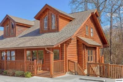 Pigeon Forge Single Family Home For Sale: 306 Big Bear Way