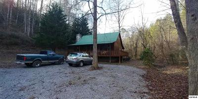 Cocke County Single Family Home For Sale: 4465 Ball Hollow Road
