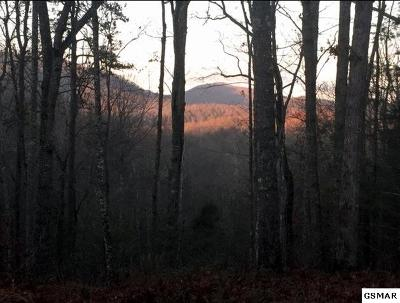Blount County Residential Lots & Land For Sale: Lot 5 Journeys End Road