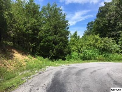 Residential Lots & Land For Sale: Lot 17 Buck Horn Rd