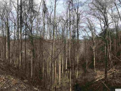 Residential Lots & Land For Sale: Lot Lot 579 Crooked Ridge Road