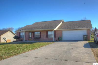 Sevier County, Jefferson County, Cocke County, Blount County, Knox County Single Family Home For Sale: 1617 Country Meadows Dr