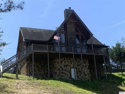 Sevierville Single Family Home For Sale: 1121 Powder Springs Rd