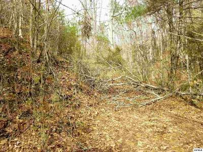 Sevierville TN Residential Lots & Land For Sale: $27,000