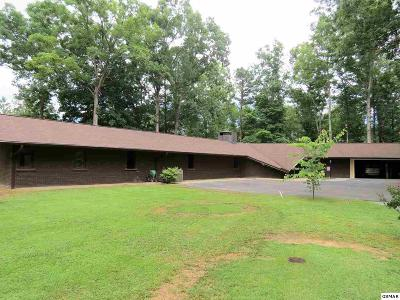 Sevier County, Jefferson County, Cocke County, Blount County, Knox County Single Family Home For Sale: 150 Hollow Rd.
