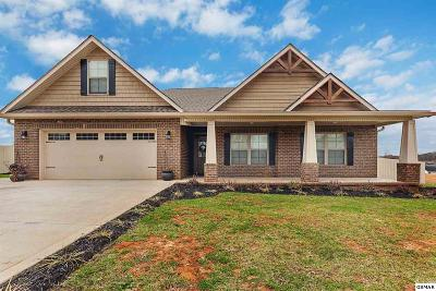 Sevier County, Jefferson County, Cocke County, Blount County, Knox County Single Family Home For Sale: 1511 Rosewood