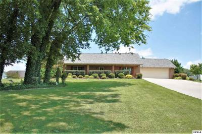 Kodak Single Family Home For Sale: 1420 Beechtop Ln.