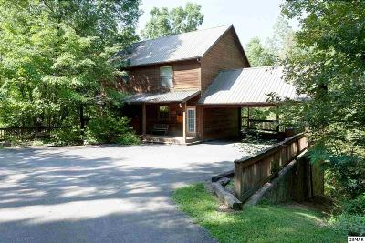 Sevier County, Jefferson County, Cocke County, Blount County, Knox County Single Family Home For Sale: 1916 Regan Ridge Way