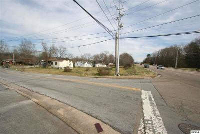 Sevierville Commercial For Sale: 1401 & 1405 Old Newport Hwy