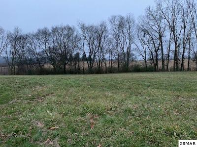 Sevier County Residential Lots & Land For Sale: Lot 11 Rippling Waters Circle
