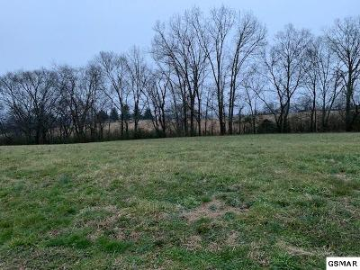 Sevier County Residential Lots & Land For Sale: Lot 12 Rippling Waters Circle
