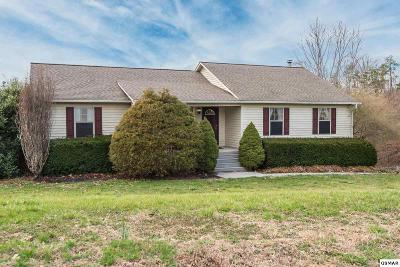 Sevier County, Jefferson County, Cocke County, Blount County, Knox County Single Family Home For Sale: 1846 Big Buck Lane