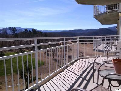 Sevier County Condo/Townhouse For Sale: 503 Dollywood Lane