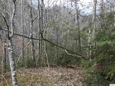 Sevier County Residential Lots & Land For Sale: Lot Lot 9 Eagle Lane