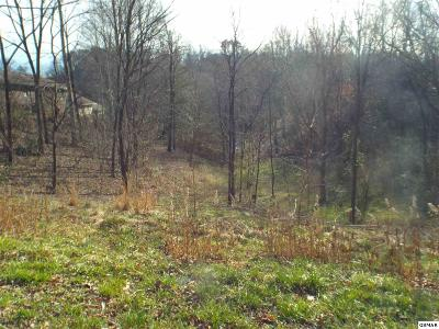Pigeon Forge Residential Lots & Land For Sale: Goldrush Rd