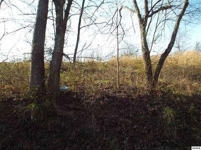 Pigeon Forge Residential Lots & Land For Sale: Goldrush Road
