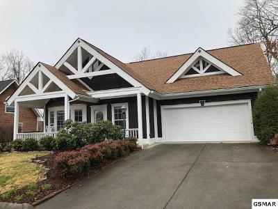 Sevierville Single Family Home For Sale: 321 Saddleback Way