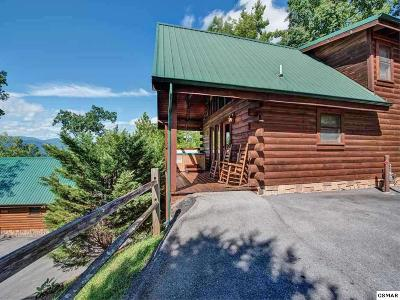 Gatlinburg Single Family Home For Sale: 859 High Mountain Way