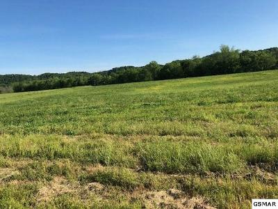 Sevierville TN Farm & Ranch For Sale: $389,900